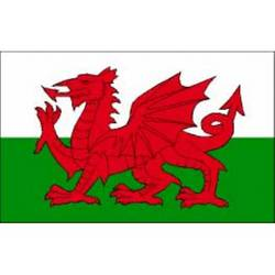 Main Image for: Welsh Dragon Flag