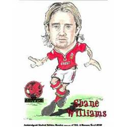 Main Image for: Shane Williams Caricature