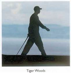 Main Image for: Tiger Woods