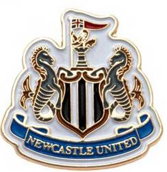 Main Image for: Newcastle Pin Badge