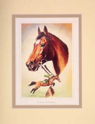 Main Image for: Mounted Study of Istabraq