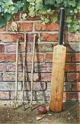 Main Image for: His Grandfathers Bat