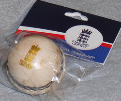 Main Image for: England ECB Mini Cricket Ball - White