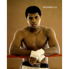Image of: Ali  - Ropes Mini Poster MP0495