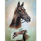 Image of: A Study of Denman - signed