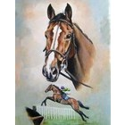 Image of: A Study of Kauto Star - signed Caroline Cook