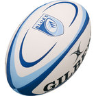 Image of: Cardiff Blues Rugby Balls