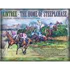 Image of: Aintree - Steeplechase Metal Wall Sign