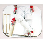 Image of: Cricket Coaster (Set of Four)