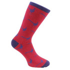 Image of: Dalaco Pheasant Socks