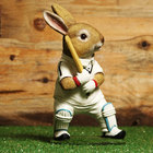 Image of: Naturecraft Rabbit Playing Cricket